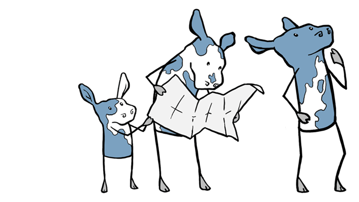 lost cows reading a map